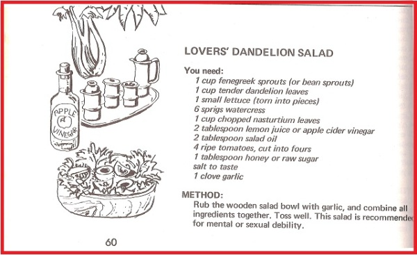 Lovers Dandelion Salad 0
