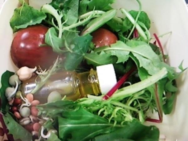 Lover's Dandelion Salad
