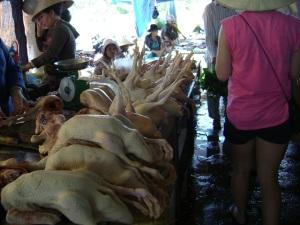 Chicken At Hoi An Market
